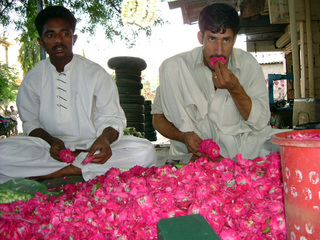 pakistan-flower.jpg
